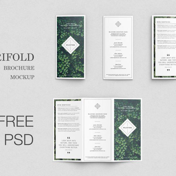 Free trifold brochure mockup 3